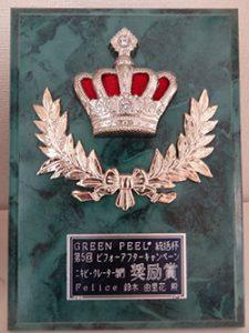 グリーンピール受賞の盾